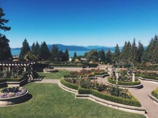 UBC's Rose Garden
