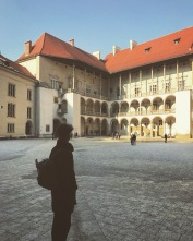 Wawel Castle Courtyard